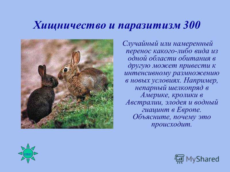 Хищничество и паразитизм 300 Случайный или намеренный перенос какого-либо вида из одной области обитания в другую может привести к интенсивному размножению в новых условиях. Например, непарный шелкопряд в Америке, кролики в Австралии, элодея и водный