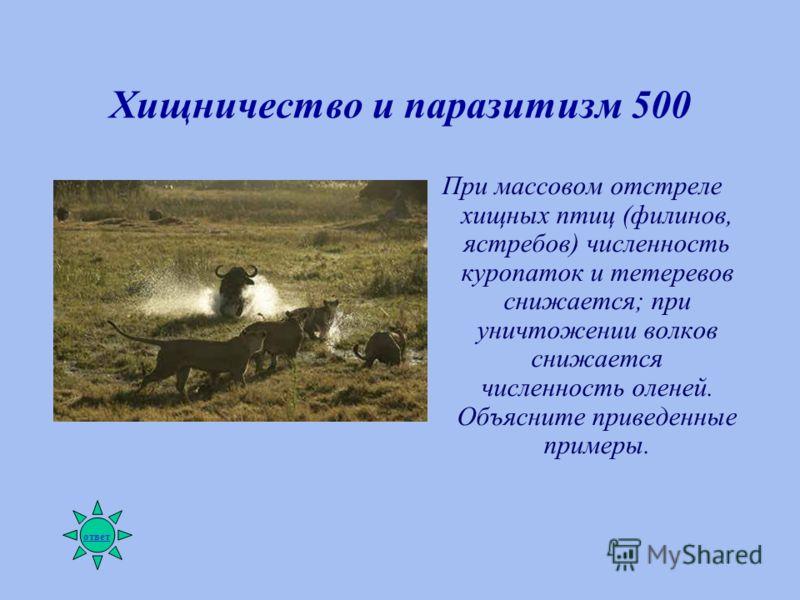 Хищничество и паразитизм 500 При массовом отстреле хищных птиц (филинов, ястребов) численность куропаток и тетеревов снижается; при уничтожении волков снижается численность оленей. Объясните приведенные примеры. ответ