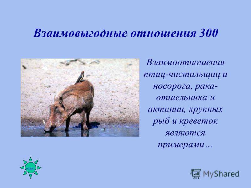 Взаимовыгодные отношения 300 Взаимоотношения птиц-чистильщиц и носорога, рака- отшельника и актинии, крупных рыб и креветок являются примерами… ответ