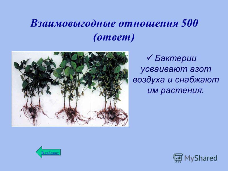 Взаимовыгодные отношения 500 (ответ) Бактерии усваивают азот воздуха и снабжают им растения. В таблицу