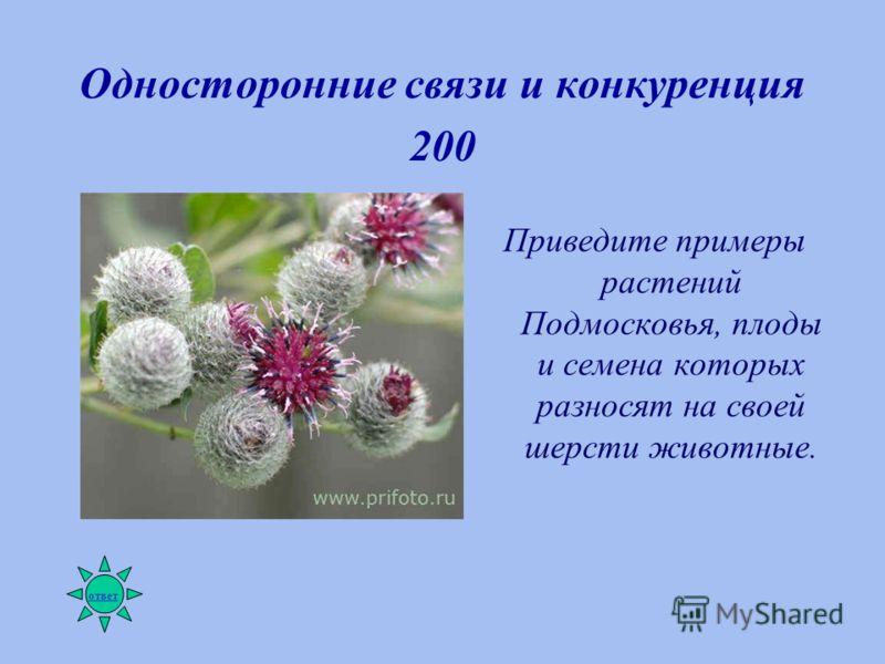 Односторонние связи и конкуренция 200 Приведите примеры растений Подмосковья, плоды и семена которых разносят на своей шерсти животные. ответ
