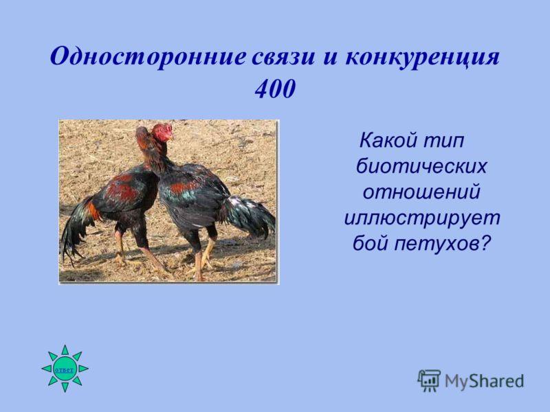 Односторонние связи и конкуренция 400 Какой тип биотических отношений иллюстрирует бой петухов? ответ