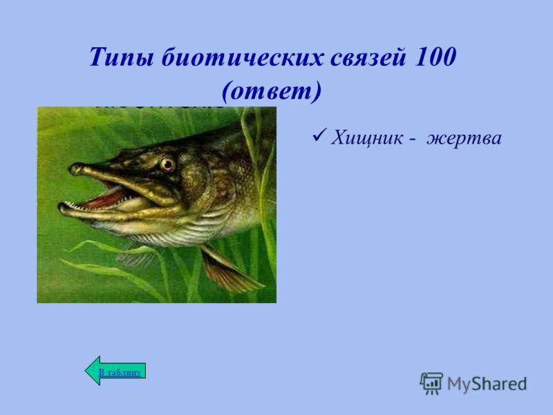 Типы биотических связей 100 (ответ) Хищник - жертва В таблицу