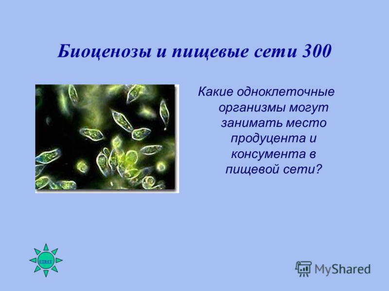 Биоценозы и пищевые сети 300 Какие одноклеточные организмы могут занимать место продуцента и консумента в пищевой сети? ответ