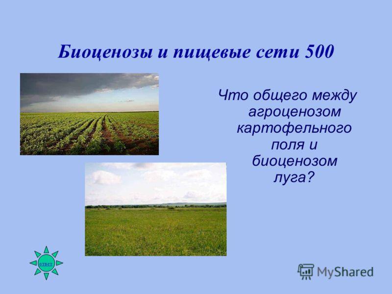 Биоценозы и пищевые сети 500 Что общего между агроценозом картофельного поля и биоценозом луга? ответ