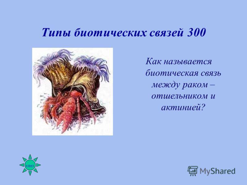 Типы биотических связей 300 Как называется биотическая связь между раком – отшельником и актинией? ответ