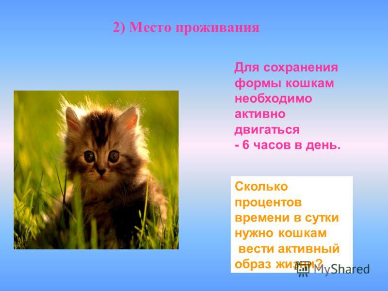 2) Место проживания Для сохранения формы кошкам необходимо активно двигаться - 6 часов в день. Сколько процентов времени в сутки нужно кошкам вести активный образ жизни?