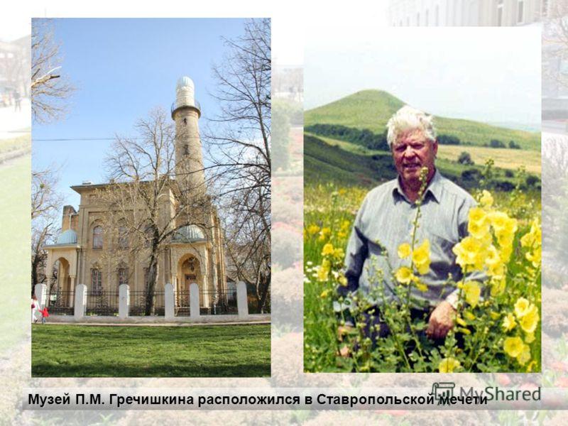 Музей П.М. Гречишкина расположился в Ставропольской мечети