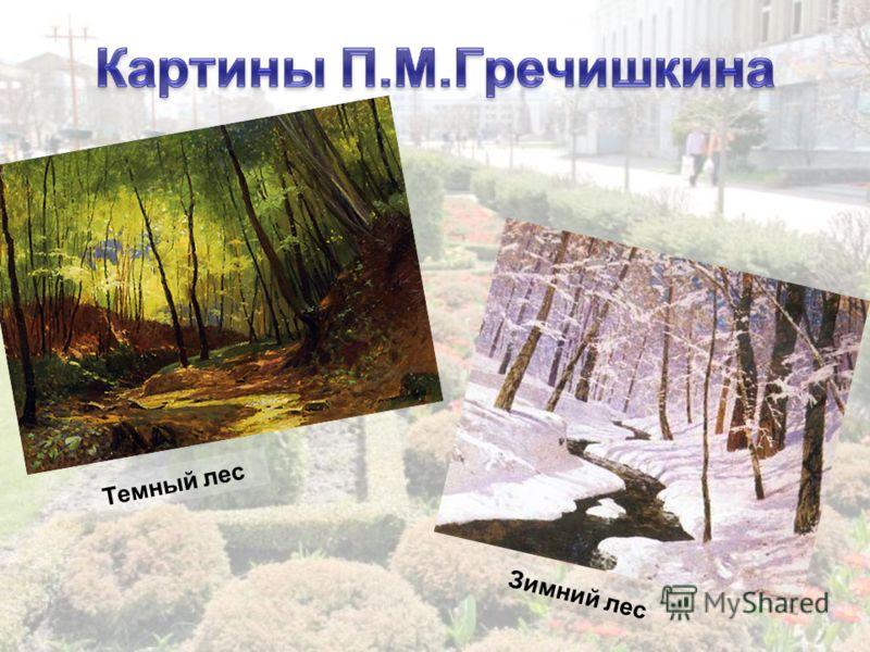 Темный лес Зимний лес
