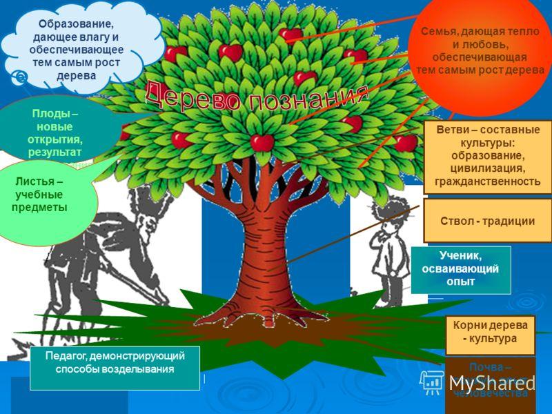 Ученик, осваивающий опыт Педагог, демонстрирующий способы возделывания Образование, дающее влагу и обеспечивающее тем самым рост дерева Плоды – новые открытия, результат исследования Семья, дающая тепло и любовь, обеспечивающая тем самым рост дерева