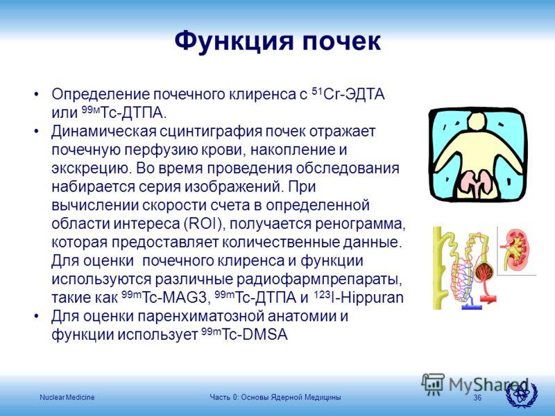 Nuclear Medicine Часть 0: Основы Ядерной Медицины 36 Определение почечного клиренса с 51 Cr-ЭДТА или 99м Тс-ДТПА. Динамическая сцинтиграфия почек отражает почечную перфузию крови, накопление и экскрецию. Во время проведения обследования набирается се