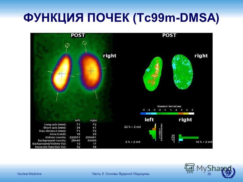 Nuclear Medicine Часть 0: Основы Ядерной Медицины 38 ФУНКЦИЯ ПОЧЕК (Tc99m-DMSA)