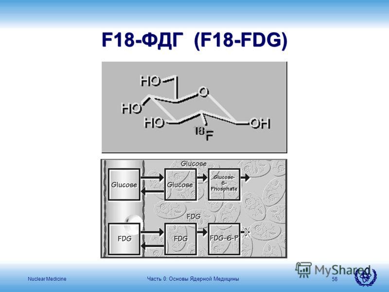 Nuclear Medicine Часть 0: Основы Ядерной Медицины 58 F18-ФДГ (F18-FDG)