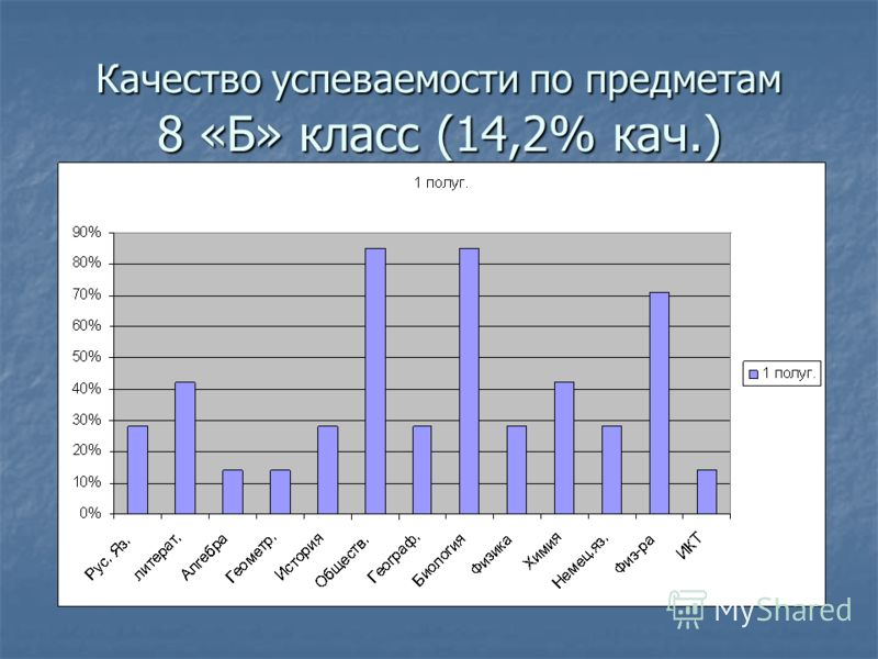 Качество успеваемости по предметам 8 «Б» класс (14,2% кач.)