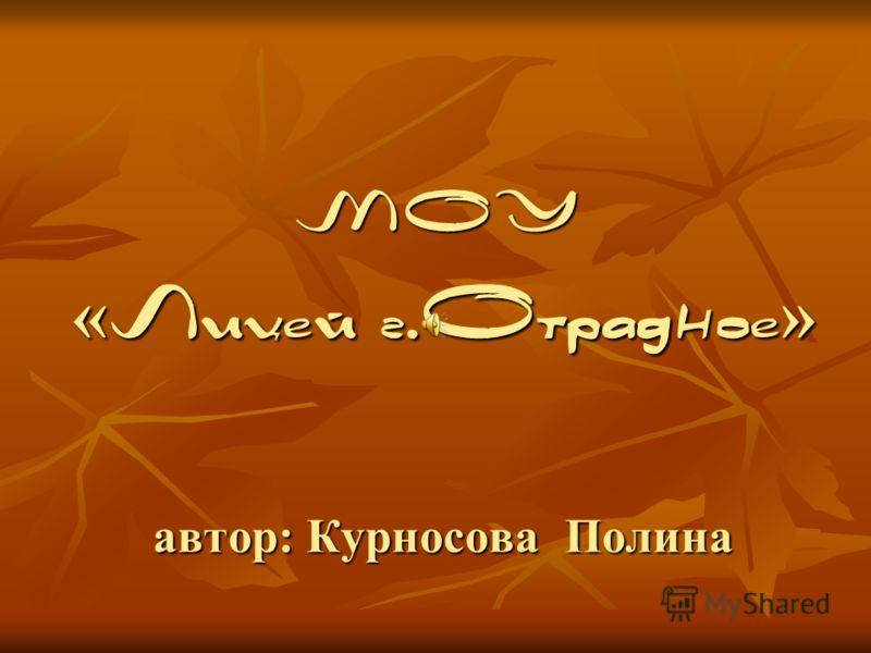 автор: Курносова Полина МОУ « Лицей г.Отрадное »
