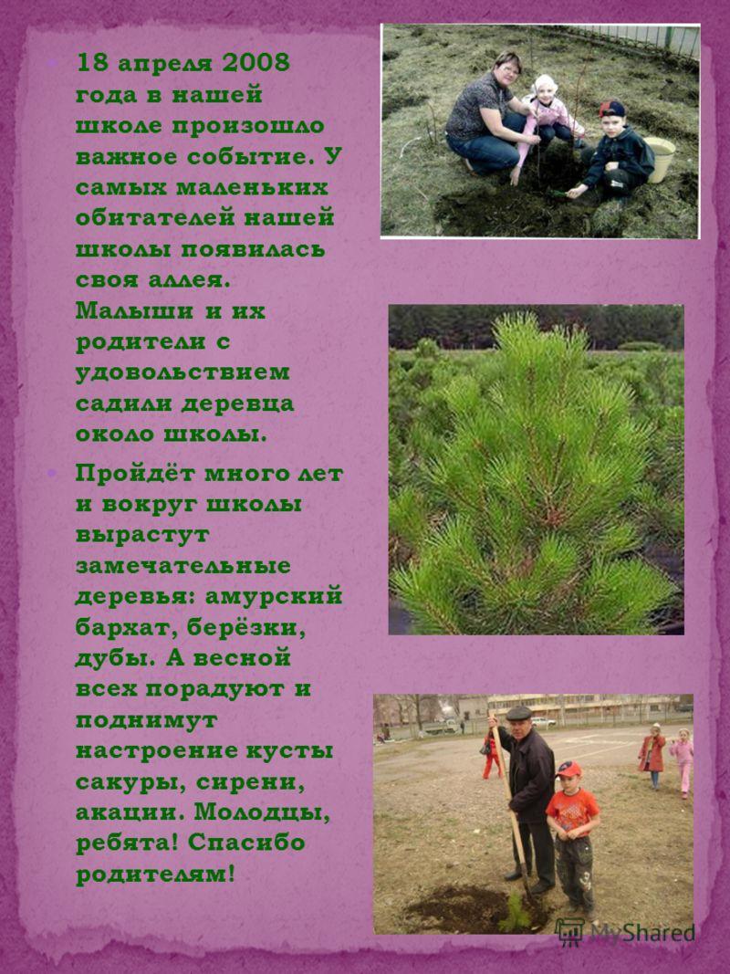 18 апреля 2008 года в нашей школе произошло важное событие. У самых маленьких обитателей нашей школы появилась своя аллея. Малыши и их родители с удовольствием садили деревца около школы. Пройдёт много лет и вокруг школы вырастут замечательные деревь
