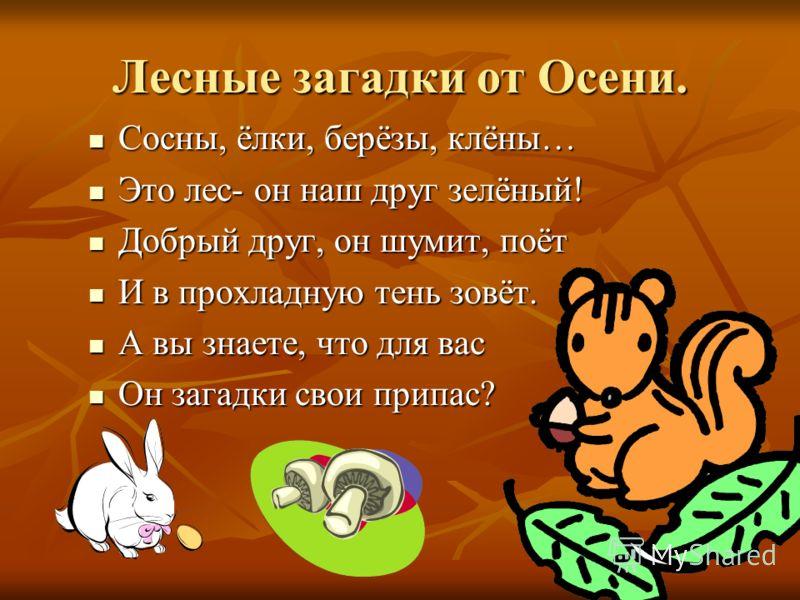 Лесные загадки от Осени. Сосны, ёлки, берёзы, клёны… Сосны, ёлки, берёзы, клёны… Это лес- он наш друг зелёный! Это лес- он наш друг зелёный! Добрый друг, он шумит, поёт Добрый друг, он шумит, поёт И в прохладную тень зовёт. И в прохладную тень зовёт.