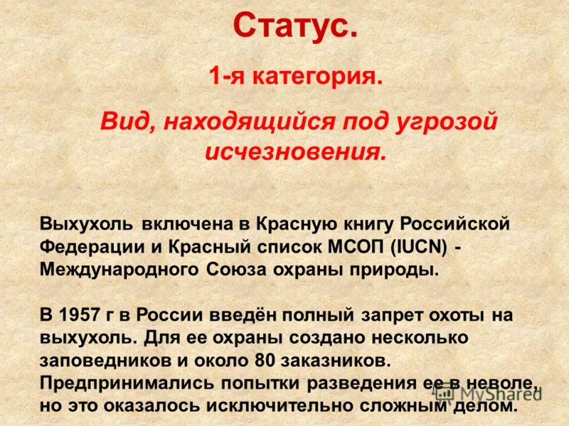Статус. 1-я категория. Вид, находящийся под угрозой исчезновения. Выхухоль включена в Красную книгу Российской Федерации и Красный список МСОП (IUCN) - Международного Союза охраны природы. В 1957 г в России введён полный запрет охоты на выхухоль. Для