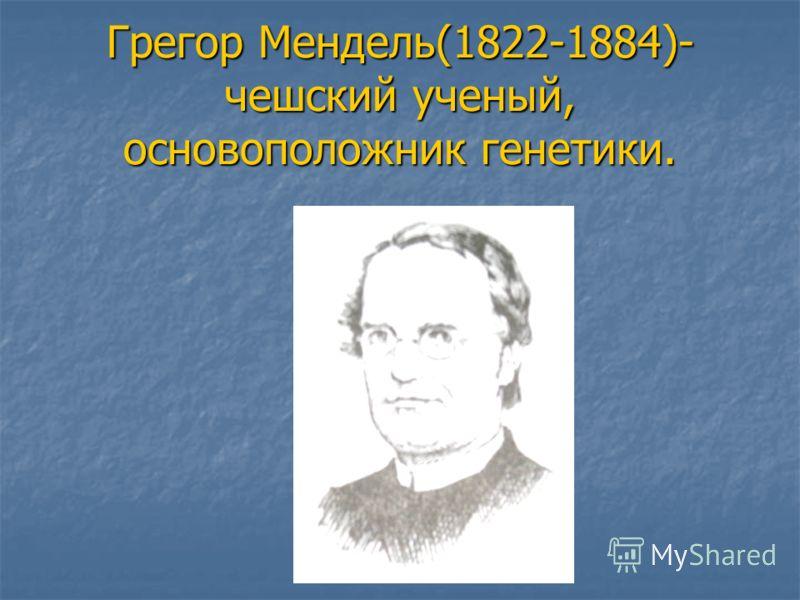 Грегор Мендель(1822-1884)- чешский ученый, основоположник генетики.