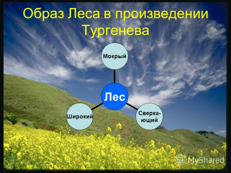 Образ Леса в произведении Тургенева Лес Мокрый Сверка- ющий Широкий