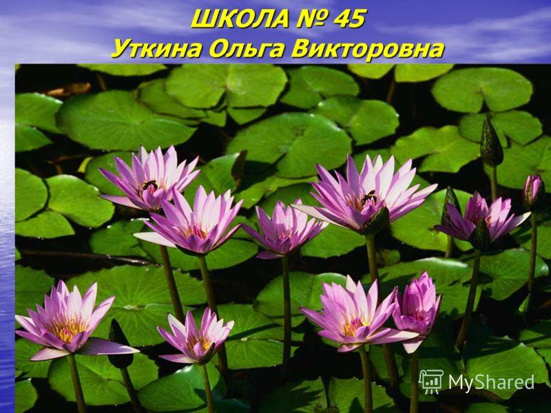 ШКОЛА 45 Уткина Ольга Викторовна
