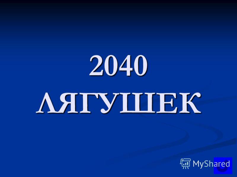 2040 ЛЯГУШЕК