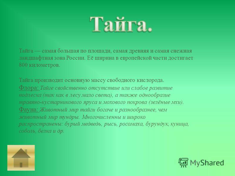 Тайга самая большая по площади, самая древняя и самая снежная ландшафтная зона России. Её ширина в европейской части достигает 800 километров. Тайга производит основную массу свободного кислорода. Флора : Тайге свойственно отсутствие или слабое разви