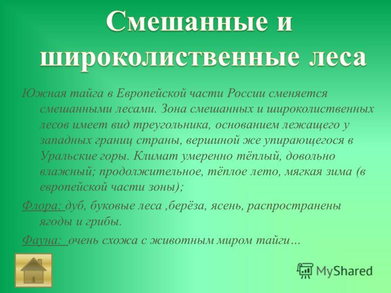 Южная тайга в Европейской части России сменяется смешанными лесами. Зона смешанных и широколиственных лесов имеет вид треугольника, основанием лежащего у западных границ страны, вершиной же упирающегося в Уральские горы. Климат умеренно тёплый, довол