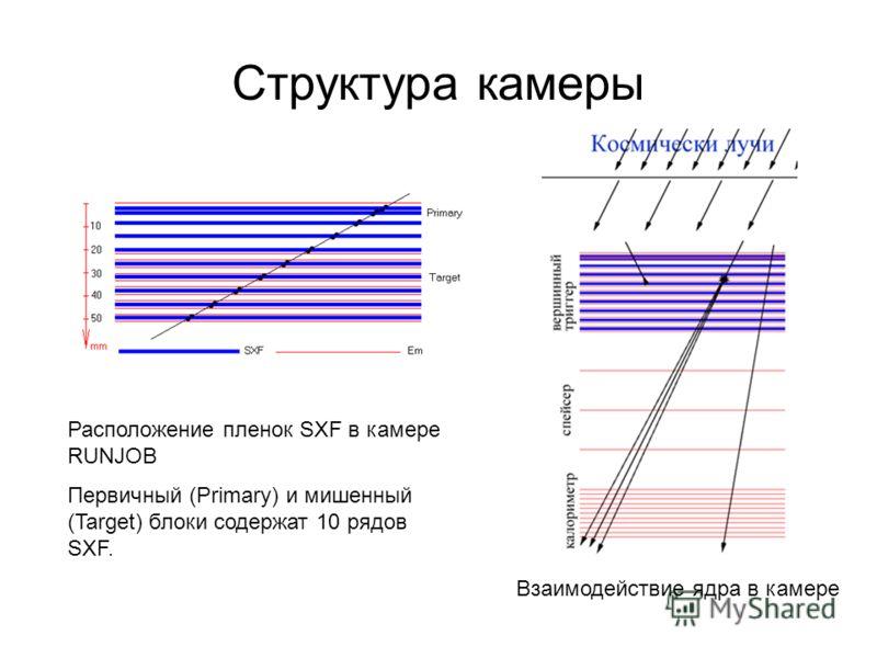 Структура камеры Расположение пленок SXF в камере RUNJOB Первичный (Primary) и мишенный (Target) блоки содержат 10 рядов SXF. Взаимодействие ядра в камере