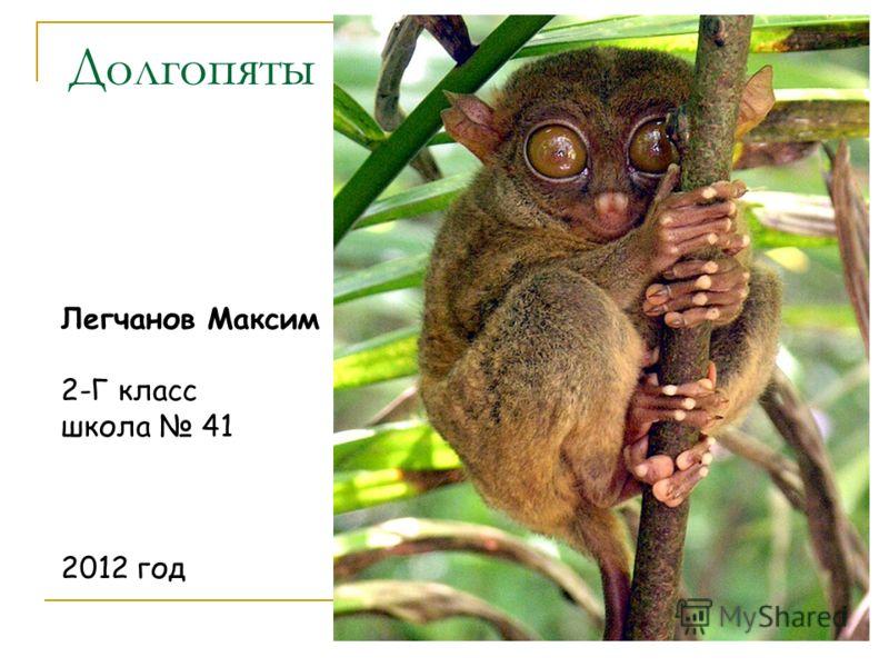 Долгопяты Легчанов Максим 2-Г класс школа 41 2012 год