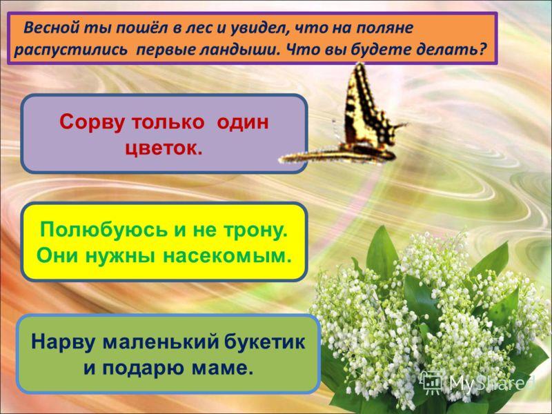 Весной ты пошёл в лес и увидел, что на поляне распустились первые ландыши. Что вы будете делать? Сорву только один цветок. Полюбуюсь и не трону. Они нужны насекомым. Нарву маленький букетик и подарю маме.