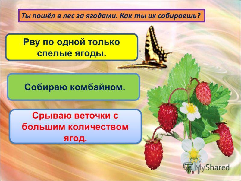 Ты пошёл в лес за ягодами. Как ты их собираешь? Рву по одной только спелые ягоды. Собираю комбайном. Срываю веточки с большим количеством ягод. Срываю веточки с большим количеством ягод.