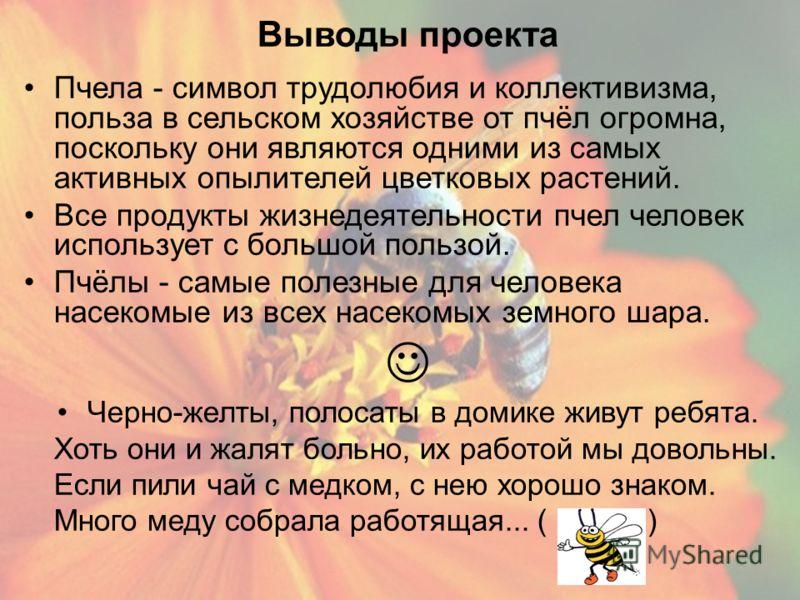 Выводы проекта Пчела - символ трудолюбия и коллективизма, польза в сельском хозяйстве от пчёл огромна, поскольку они являются одними из самых активных опылителей цветковых растений. Все продукты жизнедеятельности пчел человек использует с большой пол