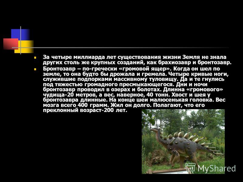 За четыре миллиарда лет существования жизни Земля не знала других столь же крупных созданий, как брахиозавр и бронтозавр. Бронтозавр – по-гречески «громовой ящер». Когда он шел по земле, то она будто бы дрожала и гремела. Четыре кривые ноги, служивши