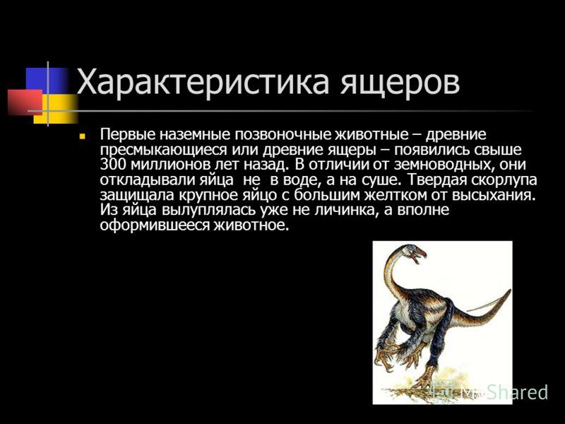 Характеристика ящеров Первые наземные позвоночные животные – древние пресмыкающиеся или древние ящеры – появились свыше 300 миллионов лет назад. В отличии от земноводных, они откладывали яйца не в воде, а на суше. Твердая скорлупа защищала крупное яй