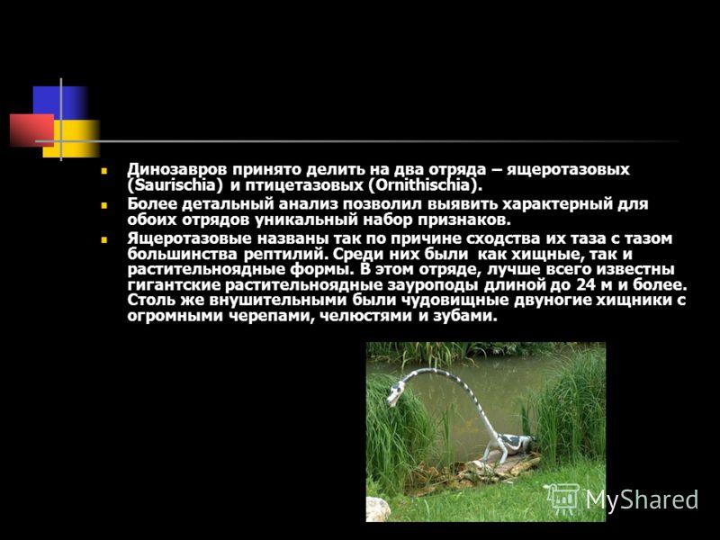Динозавров принято делить на два отряда – ящеротазовых (Saurischia) и птицетазовых (Ornithischia). Более детальный анализ позволил выявить характерный для обоих отрядов уникальный набор признаков. Ящеротазовые названы так по причине сходства их таза