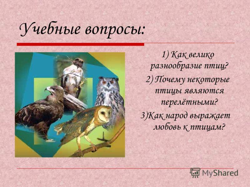 Учебные вопросы: 1) Как велико разнообразие птиц? 2) Почему некоторые птицы являются перелётными? 3)Как народ выражает любовь к птицам?