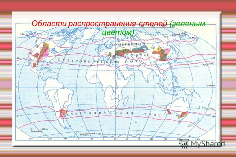 Области распространения степей (зеленым цветом)