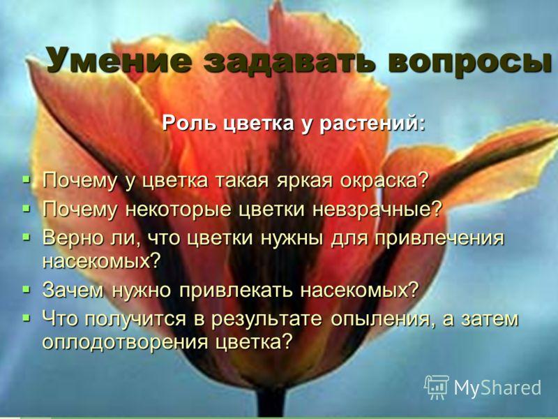 Умение задавать вопросы Роль цветка у растений: Почему у цветка такая яркая окраска? Почему у цветка такая яркая окраска? Почему некоторые цветки невзрачные? Почему некоторые цветки невзрачные? Верно ли, что цветки нужны для привлечения насекомых? Ве