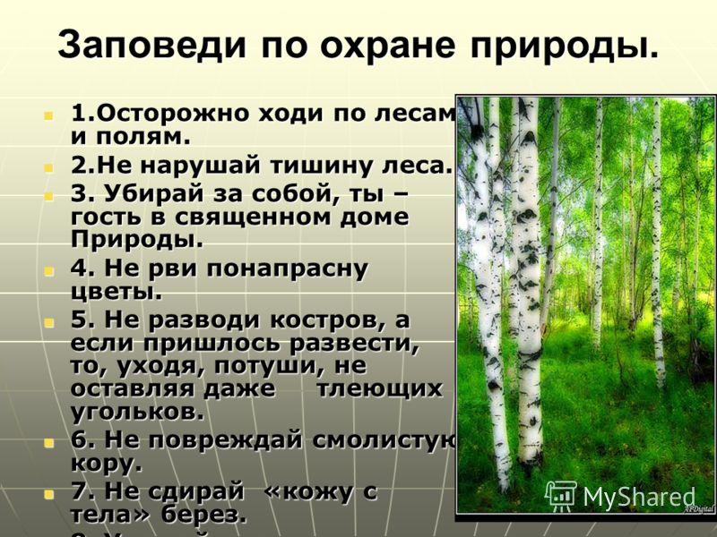 Заповеди по охране природы. 1.Осторожно ходи по лесам и полям. 1.Осторожно ходи по лесам и полям. 2.Не нарушай тишину леса. 2.Не нарушай тишину леса. 3. Убирай за собой, ты – гость в священном доме Природы. 3. Убирай за собой, ты – гость в священном
