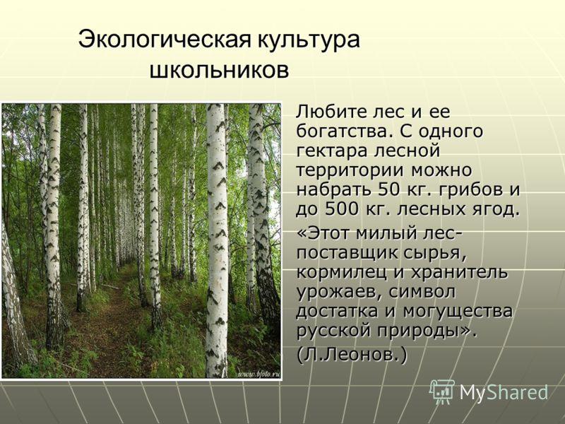 Экологическая культура школьников Любите лес и ее богатства. С одного гектара лесной территории можно набрать 50 кг. грибов и до 500 кг. лесных ягод. Любите лес и ее богатства. С одного гектара лесной территории можно набрать 50 кг. грибов и до 500 к