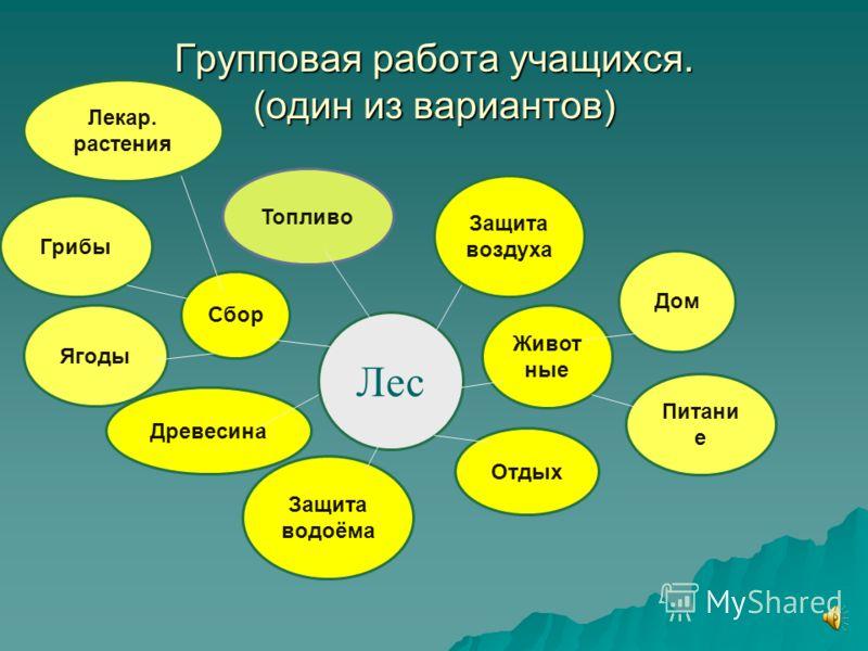 Составление кластера. - Составьте кластер - значение леса для человека и его обитателей (работа в группах). Лес