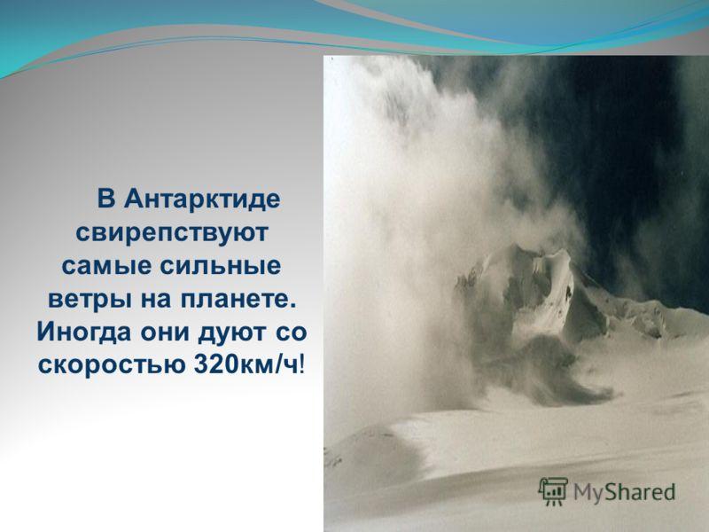 В Антарктиде свирепствуют самые сильные ветры на планете. Иногда они дуют со скоростью 320км/ч!