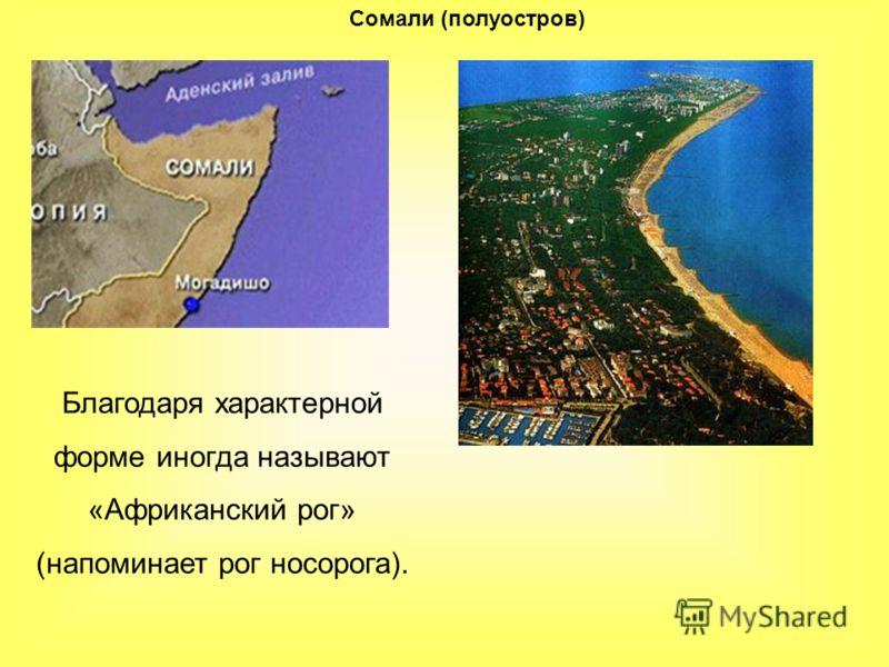 Сомали (полуостров) Благодаря характерной форме иногда называют «Африканский рог» (напоминает рог носорога).
