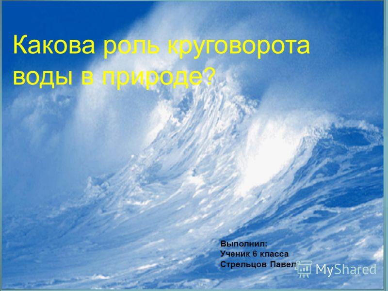 Выполнил: Ученик 6 класса Стрельцов Павел Какова роль круговорота воды в природе ?