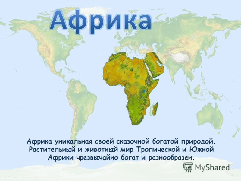 Африка уникальная своей сказочной богатой природой. Растительный и животный мир Тропической и Южной Африки чрезвычайно богат и разнообразен.