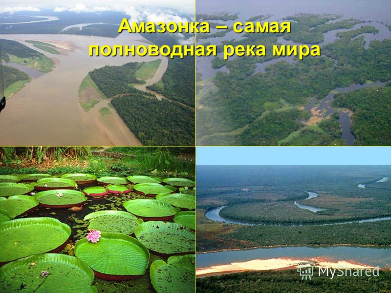 Амазонка – самая полноводная река мира