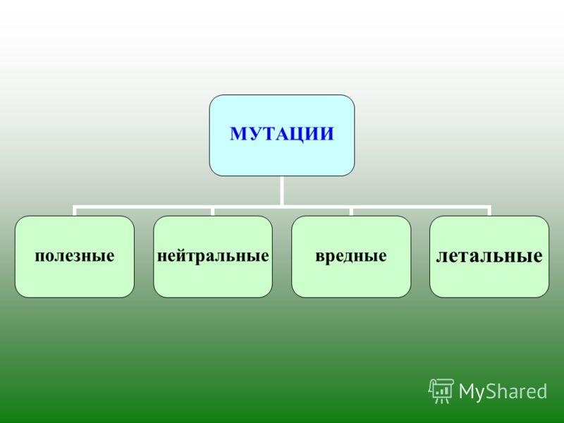 МУТАЦИИ полезныенейтральныевредныелетальные