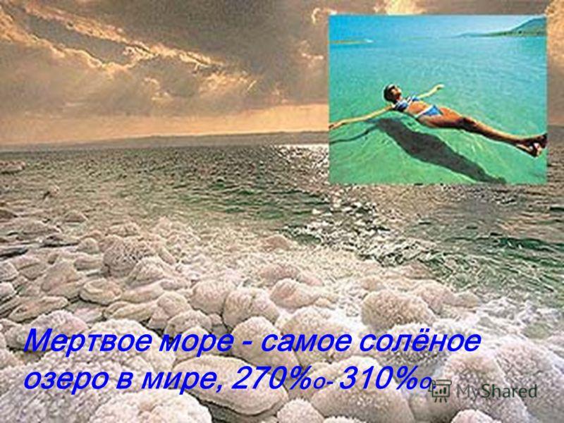 Мертвое море - самое солёное озеро в мире, 270% о- 310% о.