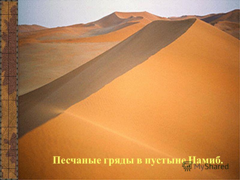 Песчаные гряды в пустыне Намиб.